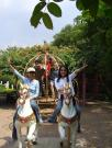 Asia/Thailand/Dream World/CIMG0356