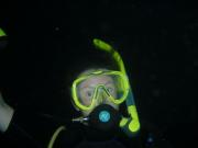 Diving/Great Barrier Reef 2004/DSC06066