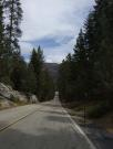 USA/Sequoia National Park/Wednesday 029