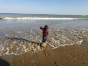Wales/Gower Easter 2014/DSC07916