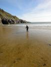 Wales/Swansea and Gower 2017/DSC09670
